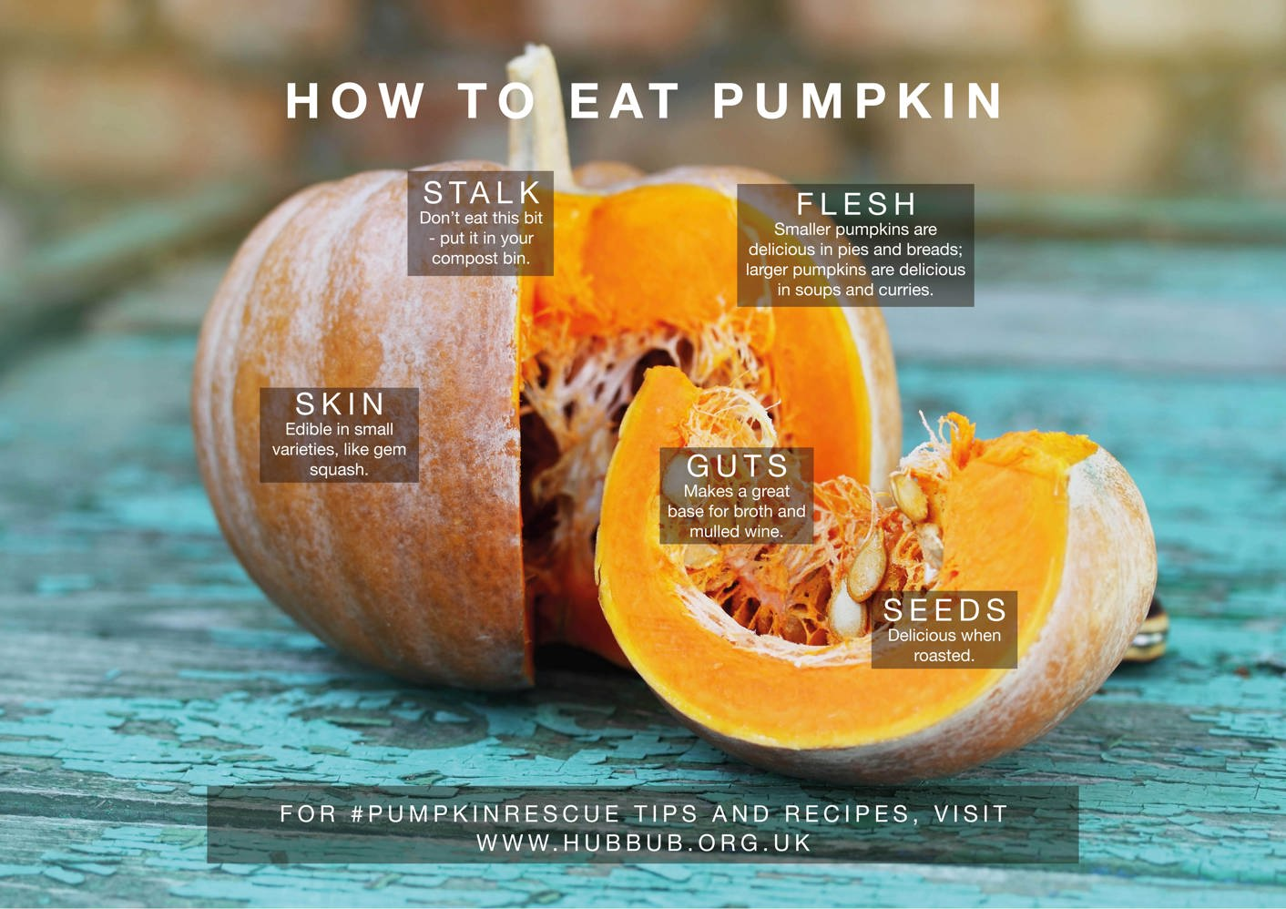 Hubbub foundation how to eat pumpkin for What parts of a watermelon can you eat