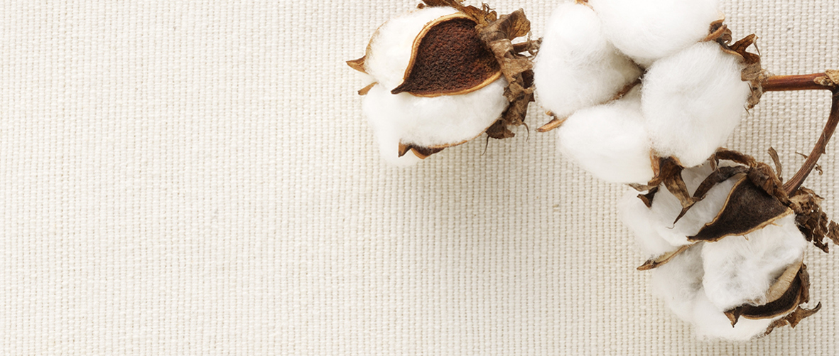 Why choose organic cotton?