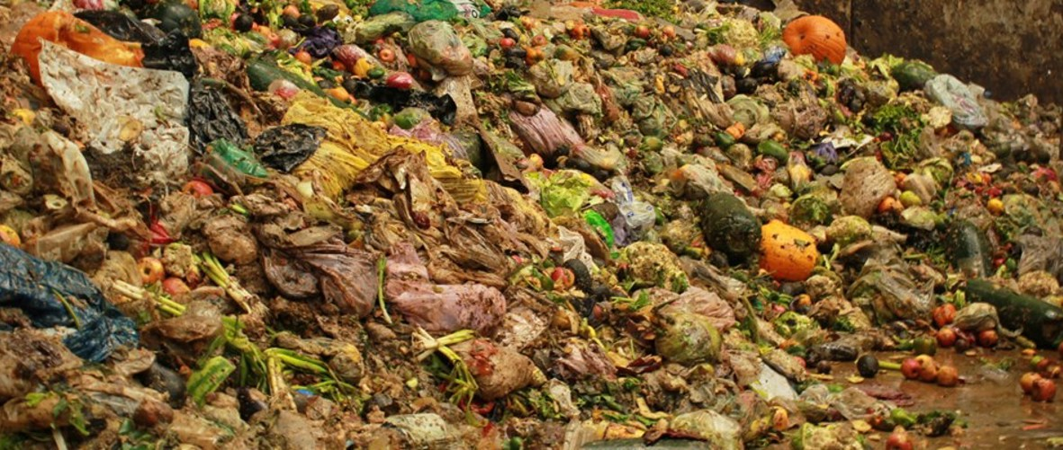 What should the next government do to fight food waste?